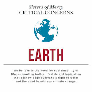 Sisters of Mercy Critical Concern with Earth and a quote underneath