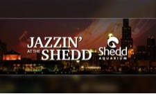 https://sxu.edu/news/articles/2016/images/jazzin-shedd-sxu.jpg